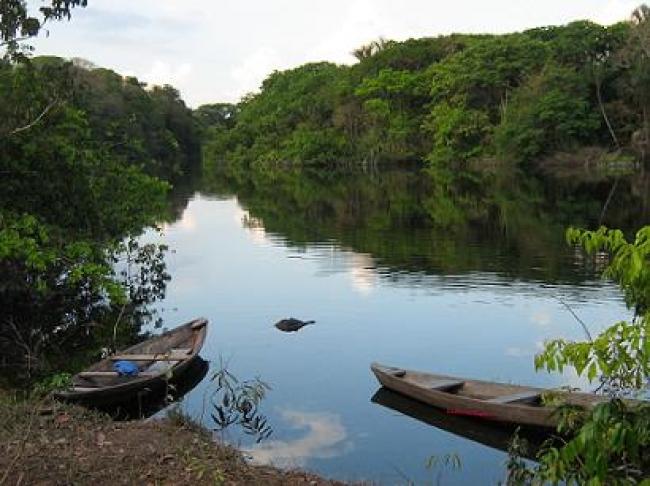Grupal de Iquitos a Manaos por el Rio Amazonas - Manaos / Iquitos /  - Buteler Viajes