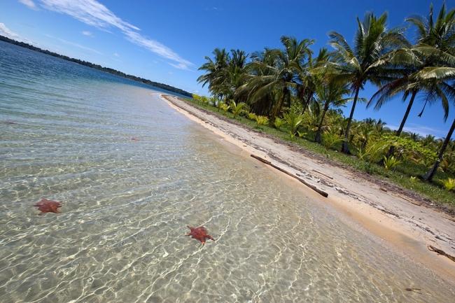 Viajes a Panama desde Cordoba - Panamá /  - Buteler Viajes